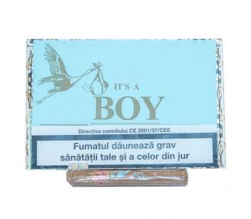 Trabucuri Arturo Fuente Brevas It's a Boy (25)